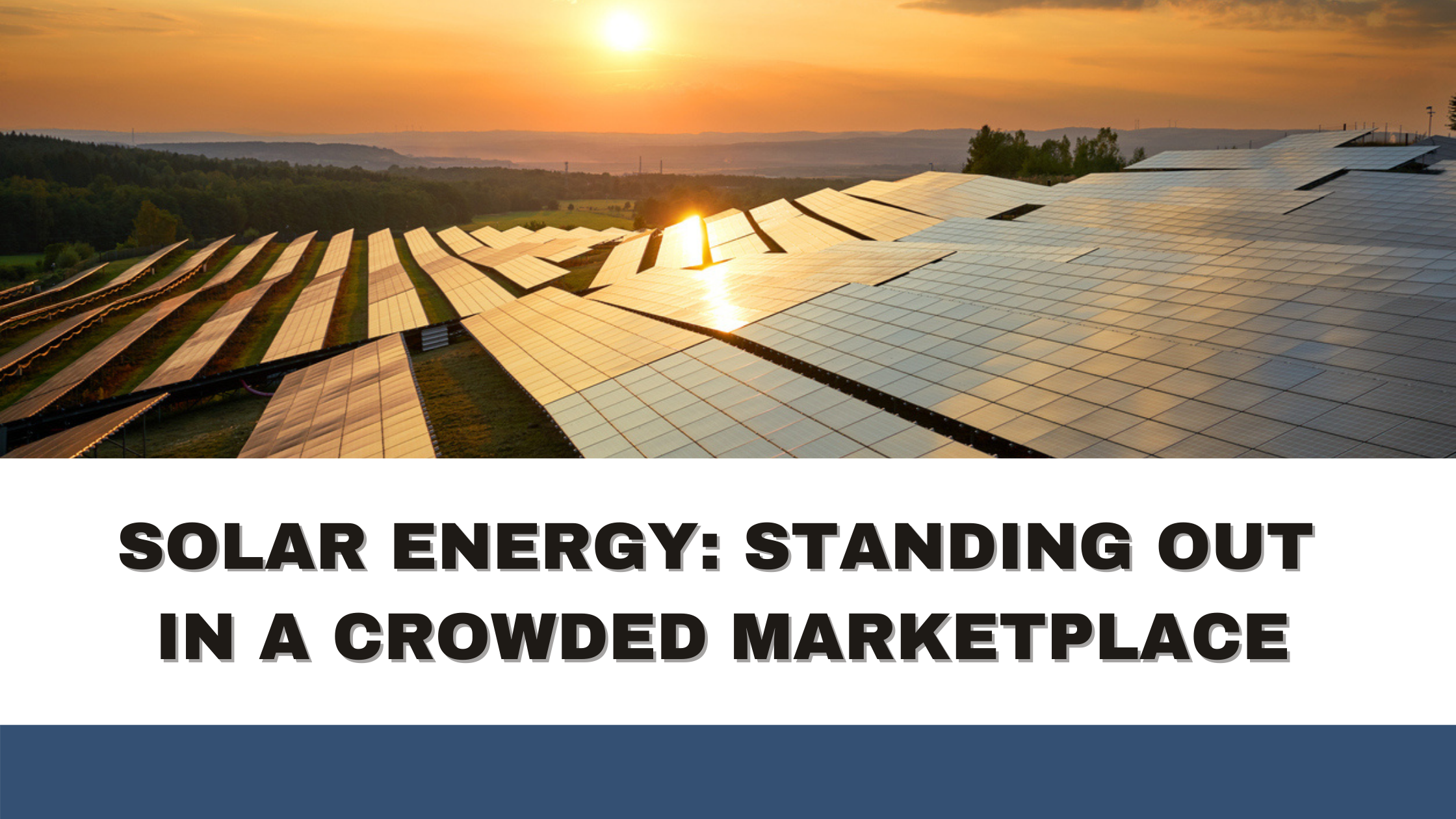 Solar Energy: Standing Out in a Crowded Marketplace
